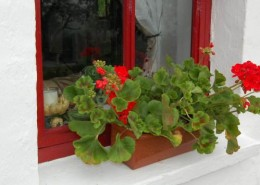 Alder Traditional Cottage Donegal - windowsill