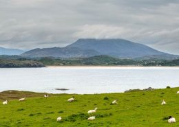 Carraig Donn Downings - Sheephaven Bay
