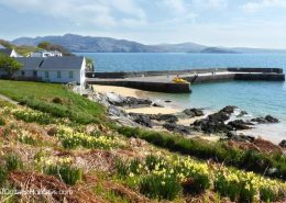 Knockalla Lodge Portsalon - 5 min drive to harbour area
