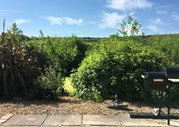 Willow House Rossnowlagh - Garden