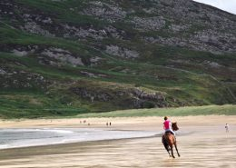 Mia's Cottage - Letter Clonmany - horse riding at Tullagh Bay