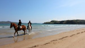 No.42 Oak Grove Dunfanaghy - pony trekking at Dunfanaghy