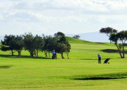Castle Inn Apartments Greencastle - 3 min drive to golf course
